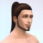 お手軽(たぶん)髪型性別コンバージョン