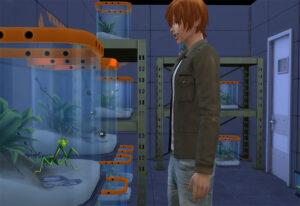 アウトドア好きアイザックのコレクション、虫やらカエルやらをニヤニヤ眺めるお部屋。